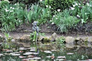 Brooker garden (2)-1